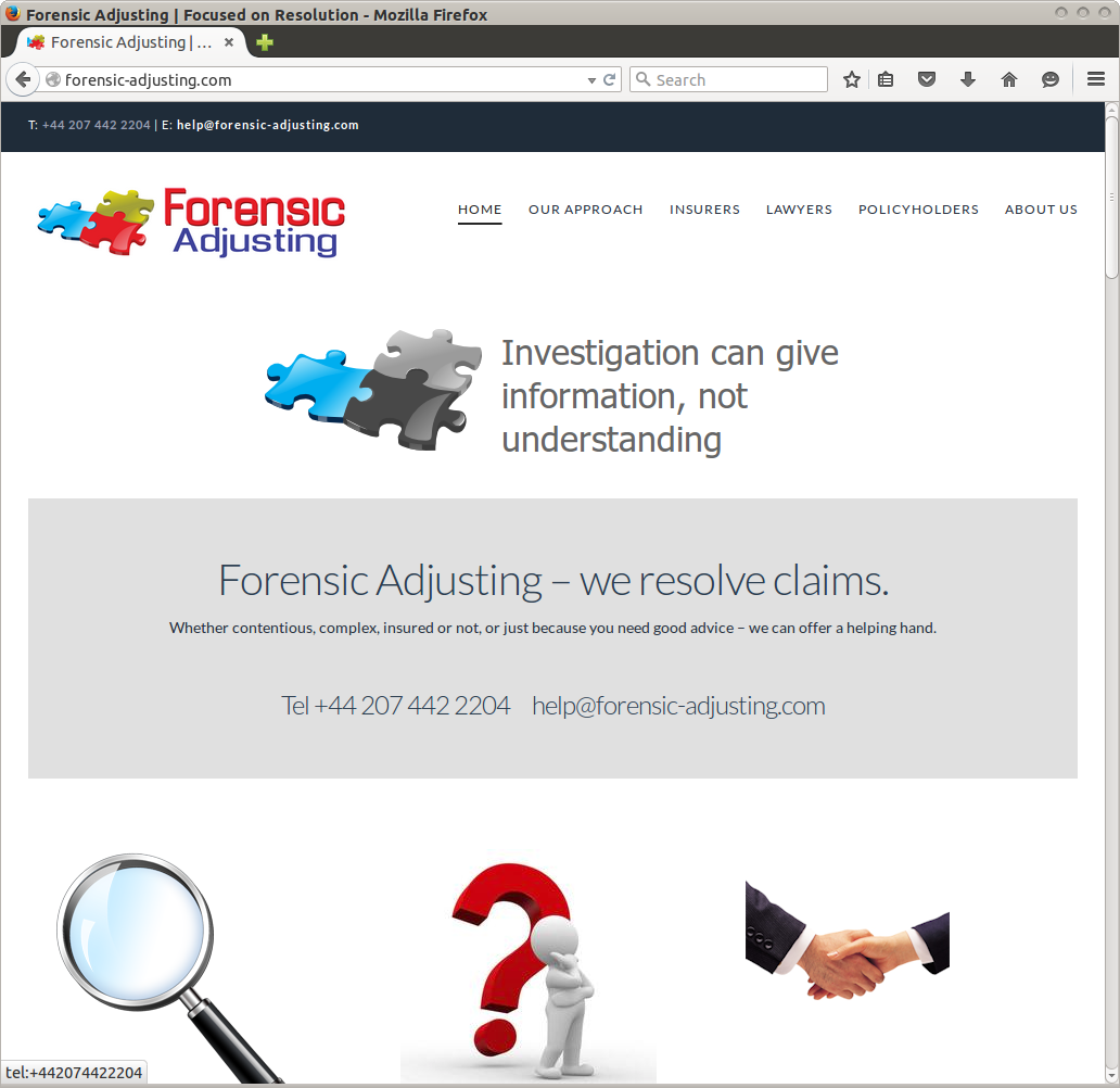 Forensic Adjusting website